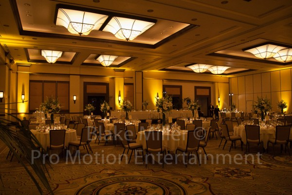 San Diego Wedding Uplighting Image (12)