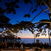 Brian & Patti's Intimate Martin Johnson House, La Jolla Wedding