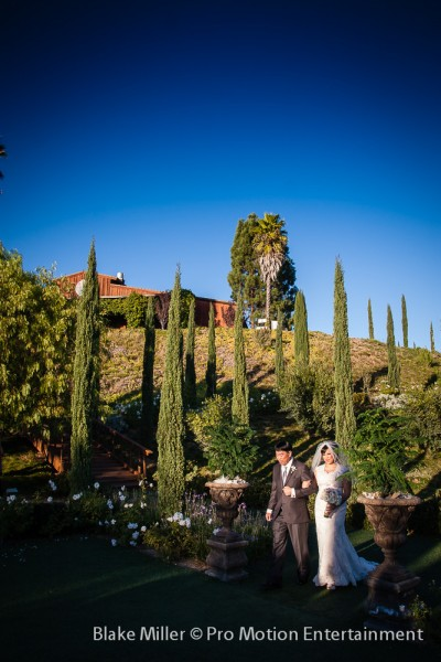 Falkner Winery Wedding Images (3)