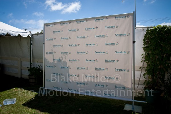 Step and Repeat Banner Installation Image (7)